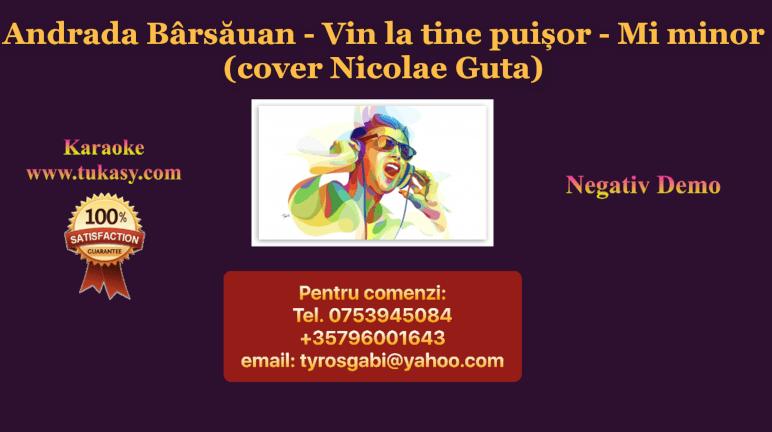 Vin la tine puisor – Andrada Barsauan (cover Nicolae Guta) – Negativ Karaoke Demo by Gabriel Gheorghiu