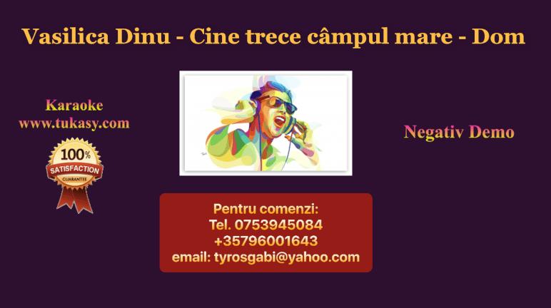 Cine trece campul mare – Dom – Vasilica Dinu – Negativ Karaoke Demo by Gabriel Gheorghiu