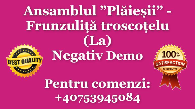 Frunzulita troscotelu – La – Nicolae Gribincea si Ansamblul Plaiesii – Negativ Karaoke Demo by Gabriel Gheorghiu
