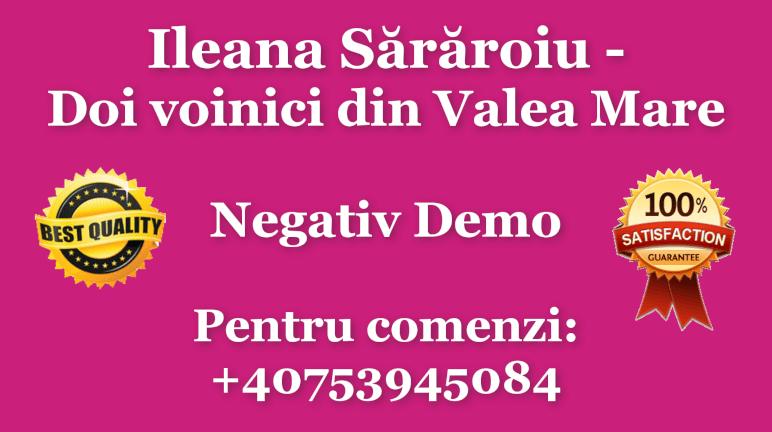 Doi voinici din Valea Mare – Ileana Sararoiu – Negativ Karaoke Demo by Gabriel Gheorghiu