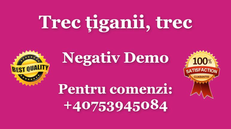Trec tiganii, trec – Negativ Karaoke Demo by Gabriel Gheorghiu