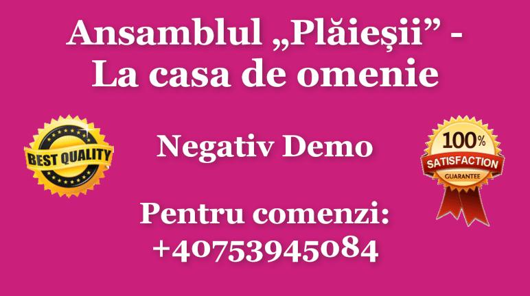 La casa de omenie – Nicolae Gribincea si Ansamblul Plaiesii – Negativ Karaoke Demo