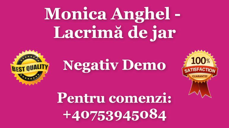Lacrima de jar – Monica Anghel – Negativ Karaoke Demo
