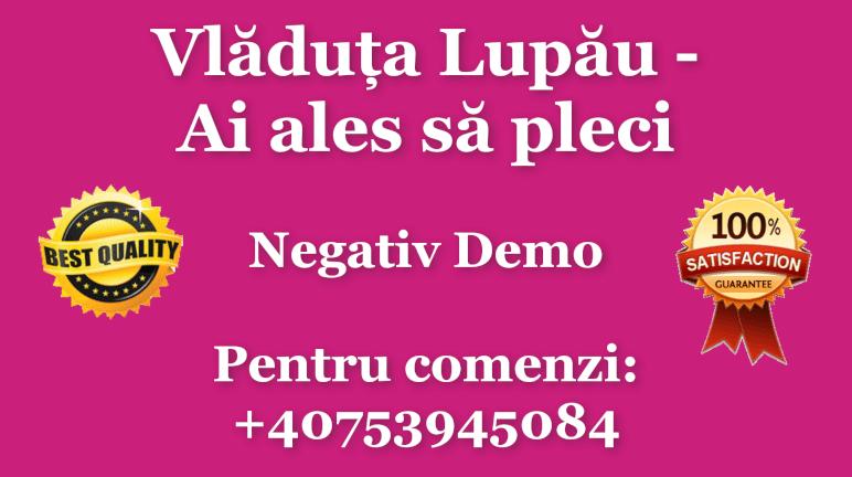 Ai ales sa pleci – Vladuta Lupau – Negativ Karaoke Demo