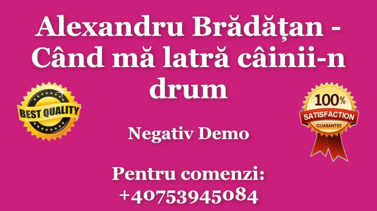 Cand ma latra cainii-n drum – Alexandru Bradatan – Negativ Karaoke Demo