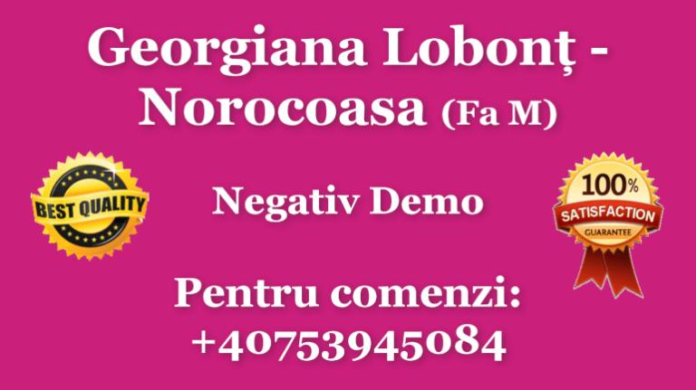 Georgiana Lobont Norocoasa - FaM