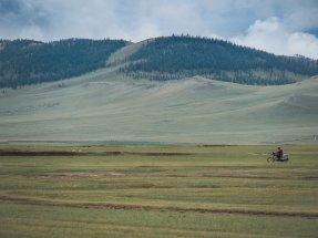 typisch mongolisch