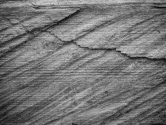 Holz V