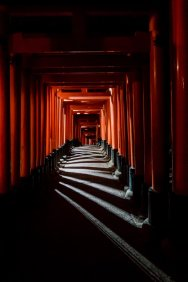 Fushimi Inari II