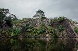 Osaka Castle II