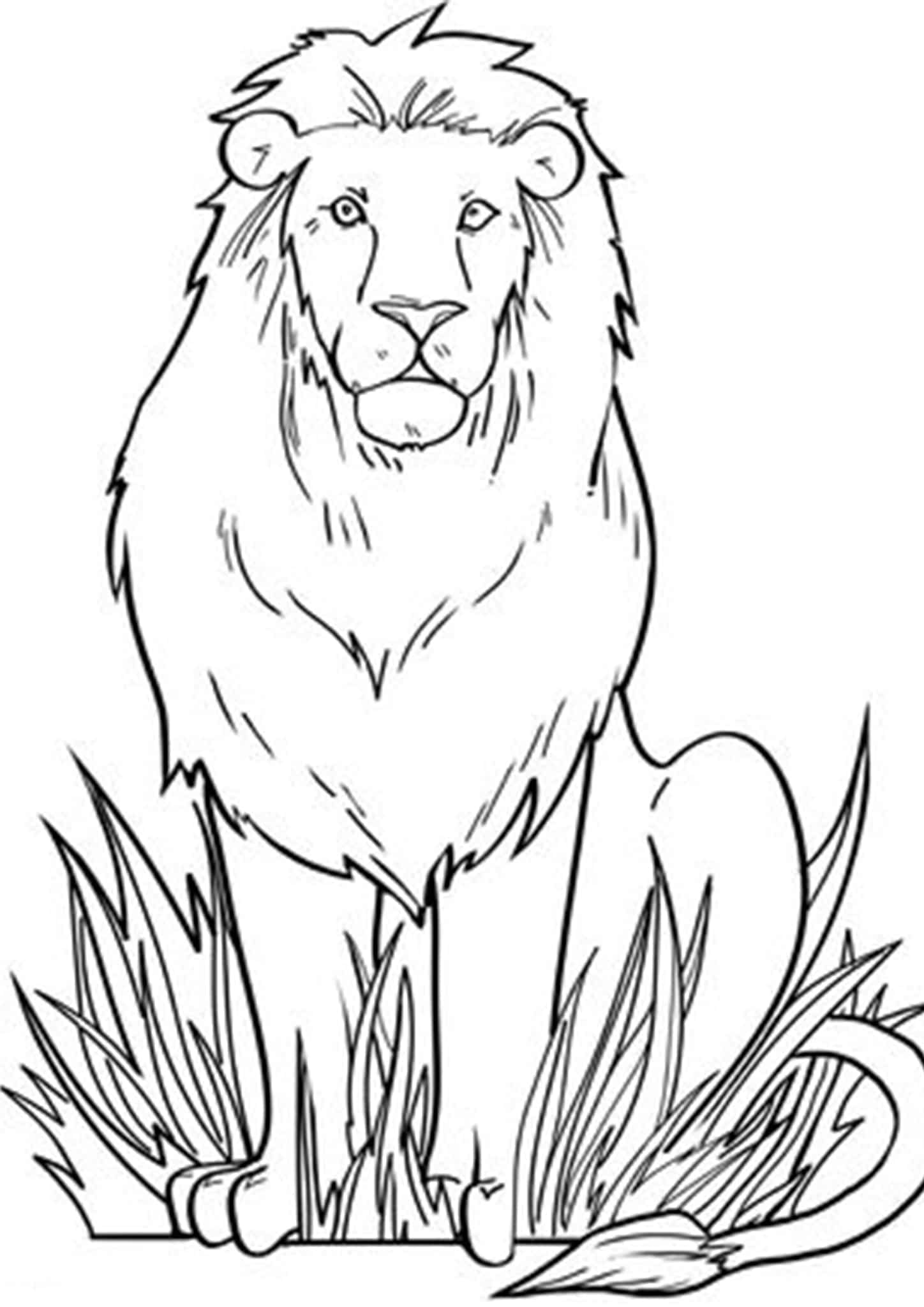 Free Amp Easy To Print Lion Coloring Pages