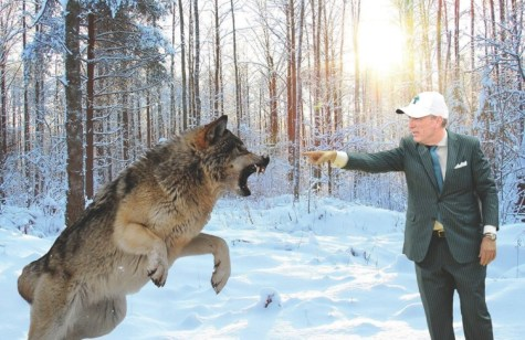 FULLABALOO: With help of Sherman Badie, Willie Fritz battles wolf, learns the value of preparation