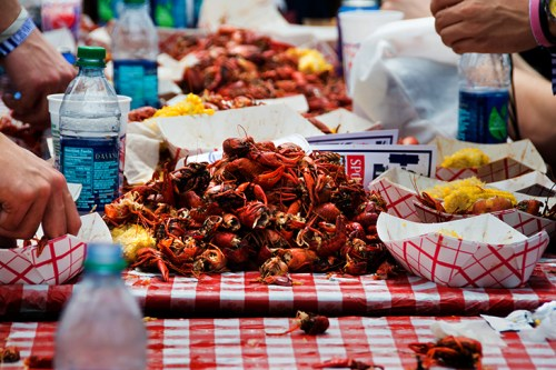 Mud bugs (New Wave In Focus, April 20, 2015)
