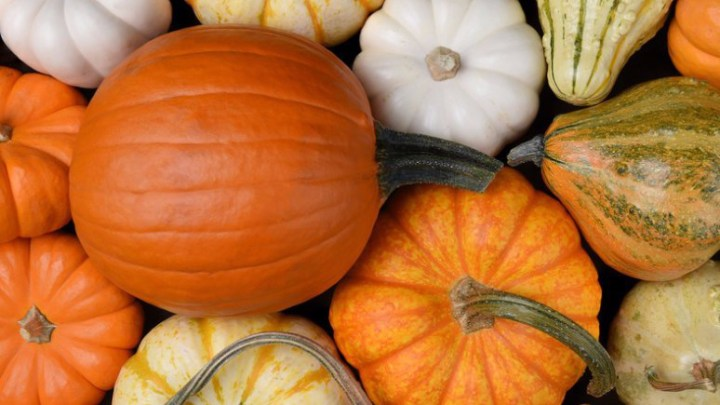 Simple and Healthy Pumpkin Recipes to Cozy Up With this Fall