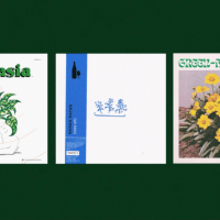 The Exciting World of Plant Motif Electronic Music