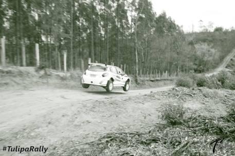 RPV_Saltos_16
