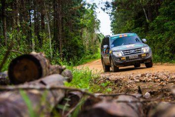 Trechos de reflorestamento estarão presentes Crédito: Cadu Rolim / Mitsubishi