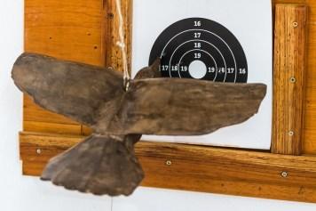 A prova consiste em mirar um pássaro de madeira, pendurado num cabo, em um alvo. Foto: Cadu Rolim/Mitsubishi