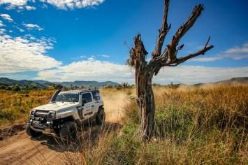 Percurso terá cerca de 120 quilômetros e muitas estradinhas em meio às árvores (Divulgação)