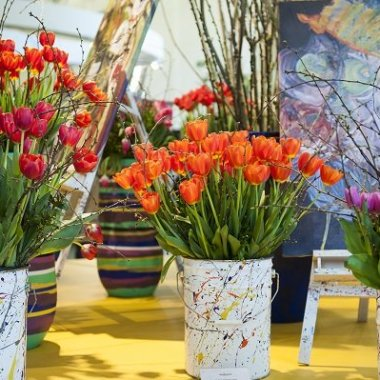 flower shows keukenhof 2018