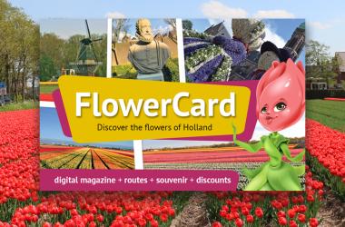 Discount Keukenhof FlowerCard