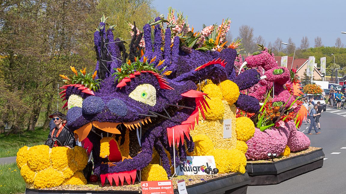 Fair Parade 2020.Dutch Flower Parade 2020 Tulip Festival Amsterdam