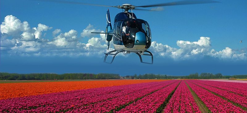 helicopter flight tulip fields Amsterdam