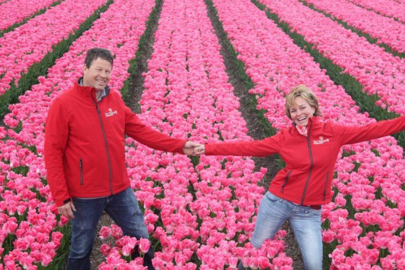 Tulip farm farmer