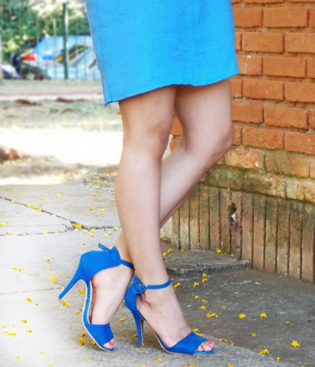 Blue-Heels-