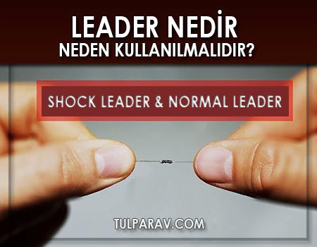 Shock Leader ve Normal Leader Nedir?