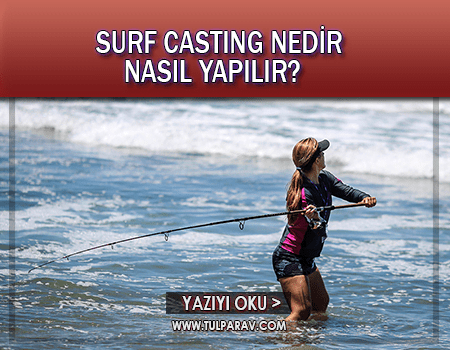 Surf Casting Nedir?