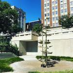 Jane Jacobs Walk: Public Spaces Tour