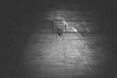 Tumba común, de Cristóbal Polo - Estenopógrafo #8