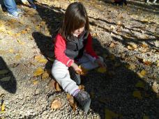 Cogiendo hojas