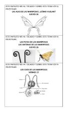 Temas para investigar sobre flores y mariposas_Página_6