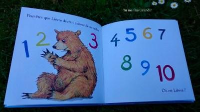 lievre et ours ou est ours? ours compte