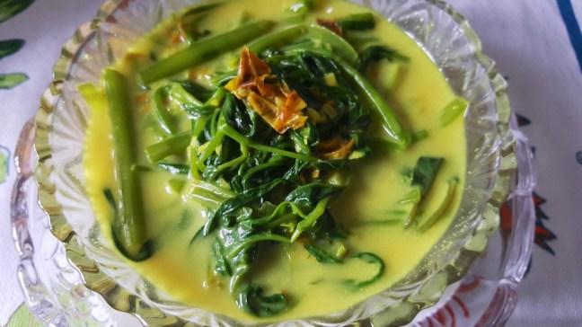 kangkong mollie 2
