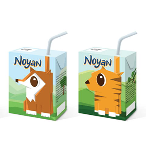 Noyan Juice Package Design