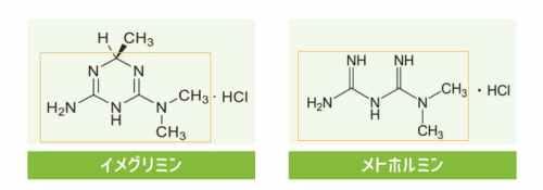2型糖尿病の新薬ツイミーグ(イメグリミン) メトホルミンを超えられるのか?