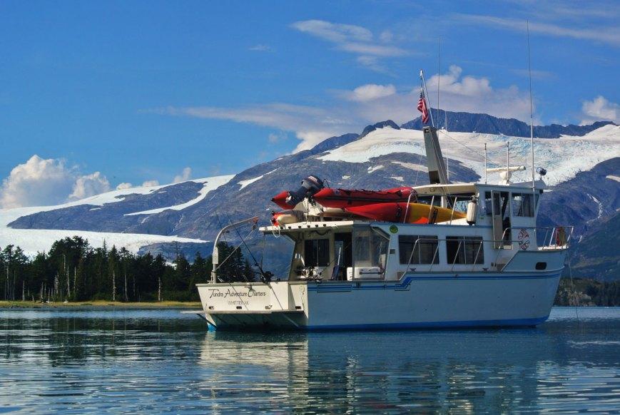 Alaska Glacier Cruise Tundra Adventure 6