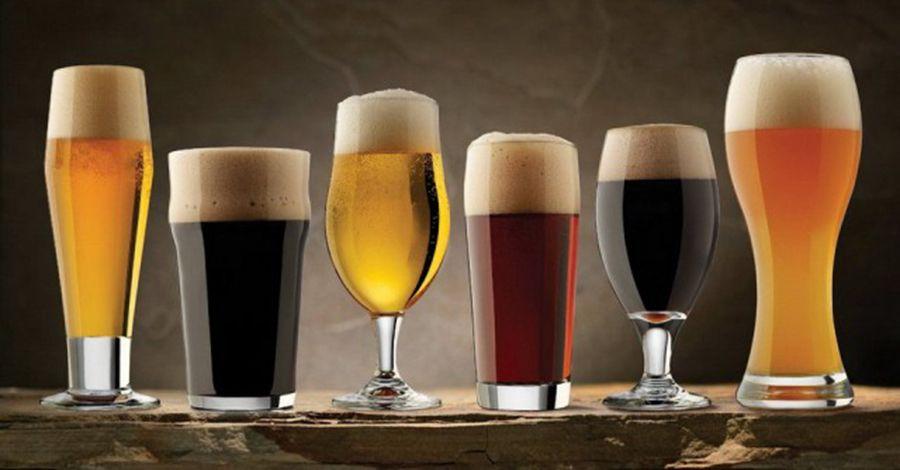 6 Variedades de Cervezas