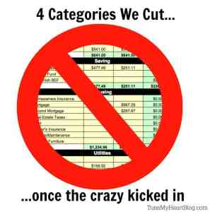 4 Big Categories We Cut Spending in once the Crazy Kicked in