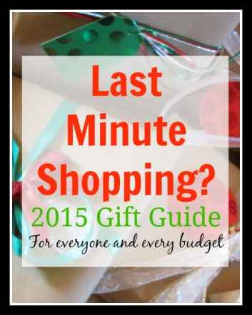 2015 Gift Guide Last Minute Shopping Ideas for Everyone and Every Budget