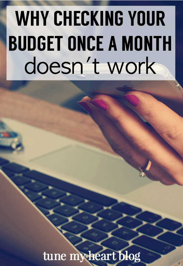 Checking your budget once a month simply won't work. Here's why and here's how to check your budget more often, without pulling your hair out. read more: http://wp.me/p6bl1n-16g