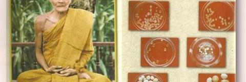 Xa loi ngai Acharn Mun