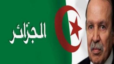 Photo of دعوات إلى عصيان مدني في الجزائر… وطائرة بوتفليقة تغادر البلاد