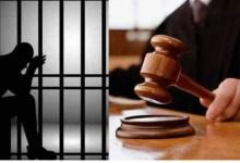 Photo of تونس : قاض بالإستئناف يبكي ويُفرج عن شيخ مصاب بالزهايمر نام في اسطبل فسجنوه بتهمة السرقة