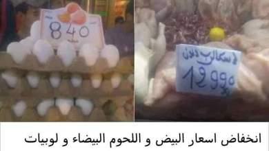 Photo of انخفاض اسعار البيض و اللحوم البيضاء و لوبيات المنتجين الكبار تتحرك