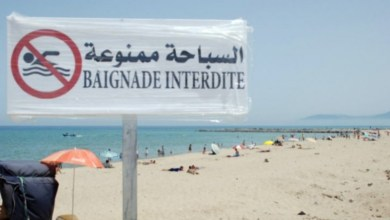 Photo of طقس اليوم : نزول الأمطار في 5 ولايات والسباحة ممنوعة بهذه الشواطئ