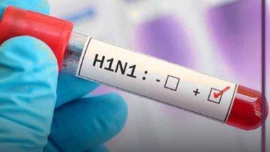 Photo of وفاة مسنة بعد إصابتها بفيروس انفلونزا الخنازير'H1N1′ في باجة